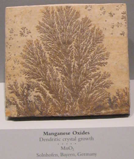 photo of Manganese Oxides - Dendritic crystal growth