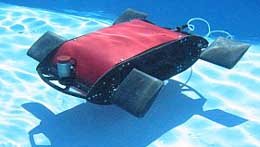 Swimming Robot