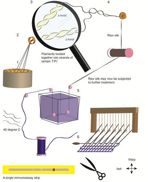 Image of process for creating silk test strips